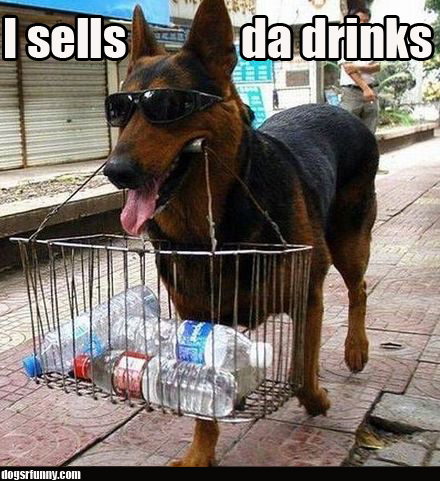 I sells da drinks funny dog picture I sells da drinks
