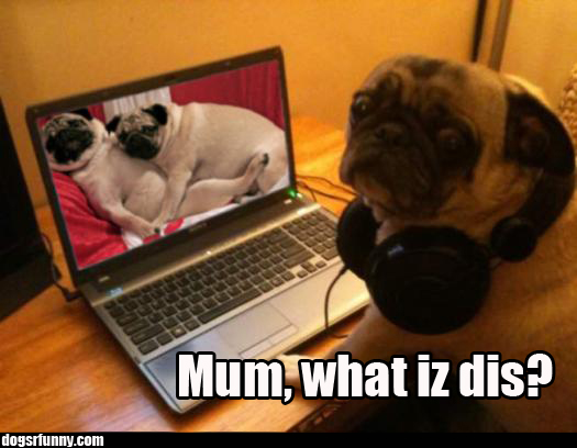 pugporn Mum, what iz dis?