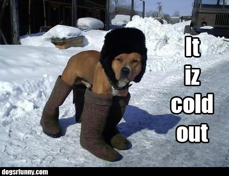 itizcoldoutside It iz cold outside